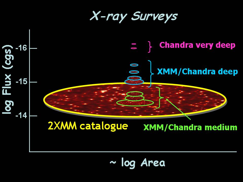 Comparison of Chandra and XMM X-ray Surveys